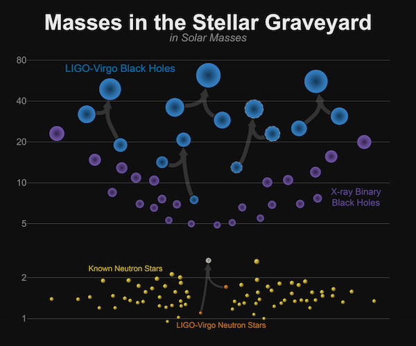Masses of Neutron Stars and Black Holes